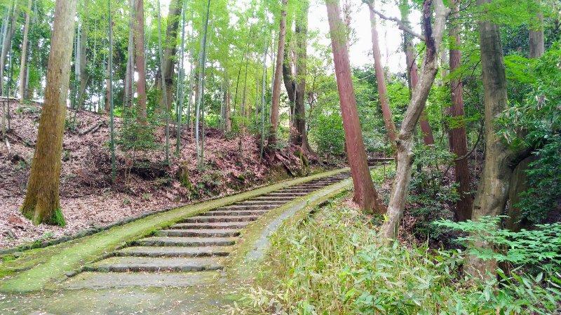 正伝寺までの参道